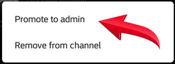 اضافه کردن مدیر به کانال تلگرام